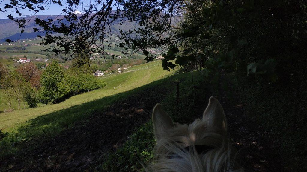 Ballade à cheval-4